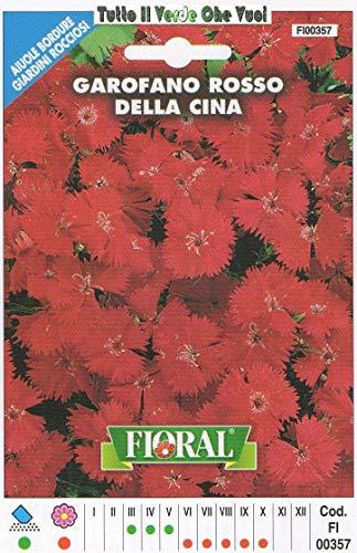 AGROBITS GAROFANO Rosso Cinese - AIUOLE Bordure Giardini ROCCIOSI-Floral - A SEMENTI