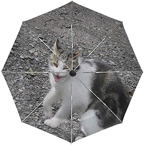 Automatischer Regenschirm Cat Spotted Sit Aggression Stones Travel Komfortabel Winddicht Wasserdicht Faltbar Auto Open Close