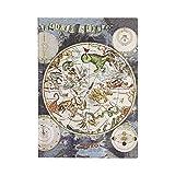 Paperblanks Agendas Flexis de Tapa Blanda de 12 Meses 2020 Planisferio Celeste | Apaisado | Midi (130 × 180 mm)
