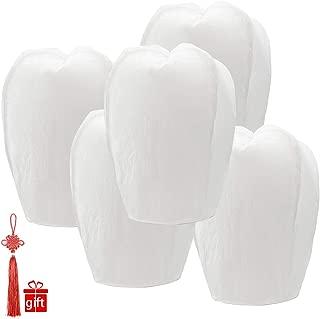 GAYUSAN Chinese Lanterns 20-Pack – 100% Biodegradable, Paper Lantern – Japanese Lantern for Weddings, Celebrations, Memorial Ceremonies