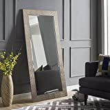 Naomi Home Mosaic Style Full Length Floor Mirror Champagne