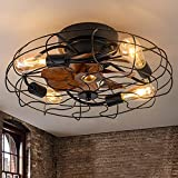 DIDER 20'' Low Profile Caged Ceiling Fan with Lights Remote Control,...