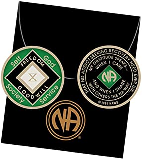 10 Year Green and Black NA Medallion Official Narcotics Anonymous Chip