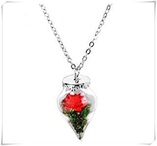 Magic Necklace, Rose in a Glass Container Dome Pendant Chain Jewelry.