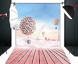 Fondo de fotografía de cumpleaños de bebé globos y cielo azul tierra de madera rosa 150x220cm S-959