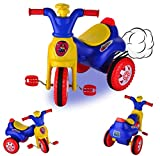 ToyDor 100 % Safety Designed Kids Cycle Tricycle Toys for Kids Girls Boys