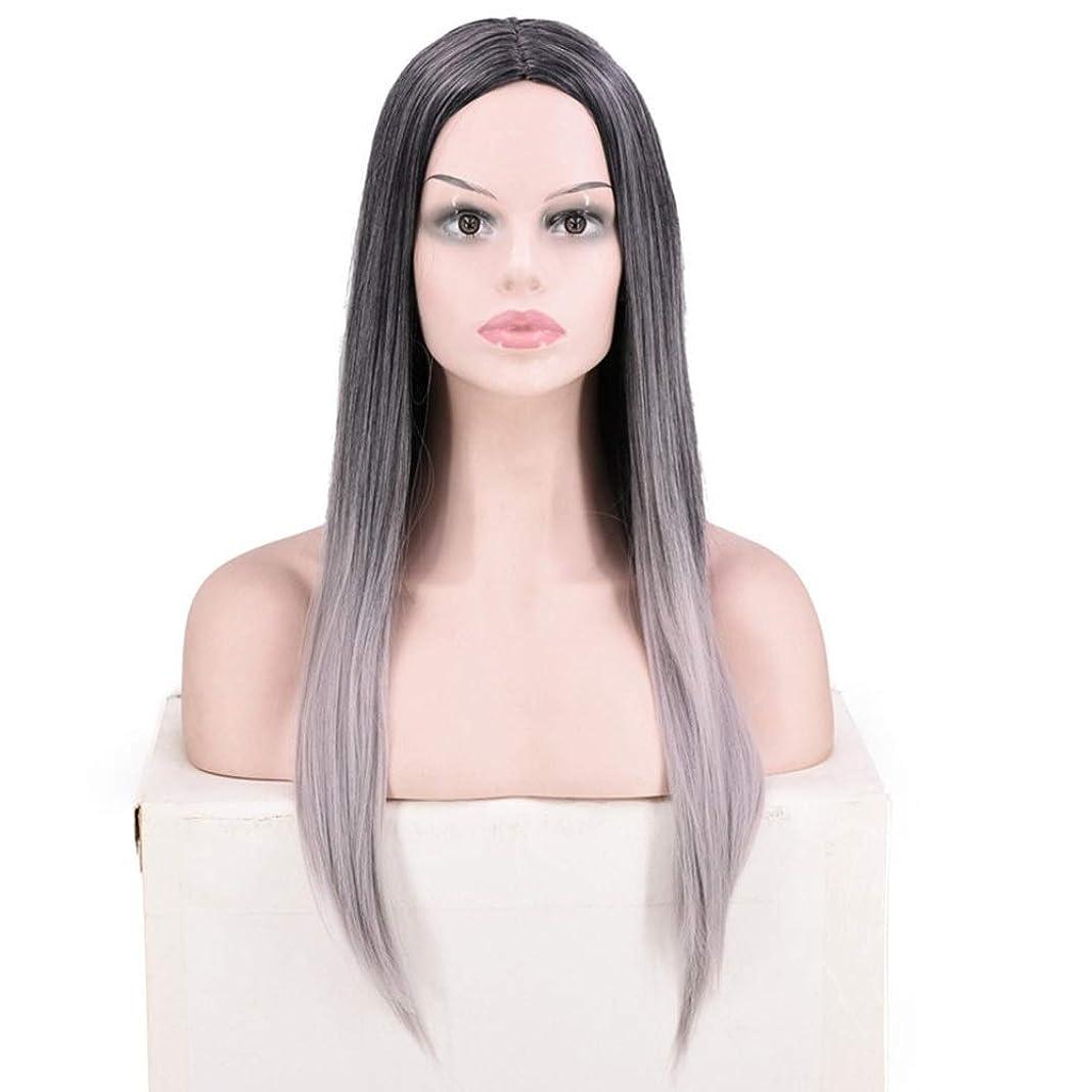 ガウン不完全な孤児Yrattary ファッション女性のブラックグレーロングストレートヘアナチュラルルッキングウィッグ日常のコスプレのために合成毛レースのかつらロールプレイングかつら (色 : 1T0906)