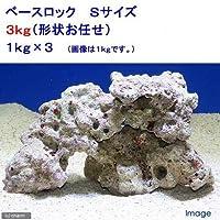 (海水魚)ベースロック Sサイズ(3kg)(形状お任せ) 北海道航空便要保温