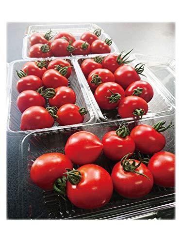 朝採り 完熟 ミニトマト フルーツトマト 和歌山 中居農園 1kg (250g×4パック)