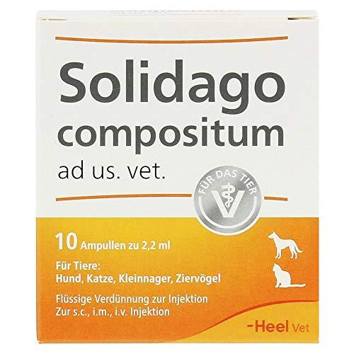 Solidago Compositum ad us. vet. Ampullen