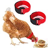 BBEART Chicken Collar 2 Pack Anti Crow Rooster Collar No Crow Noise Neck Belt for Roosters Cockerel (Red B)