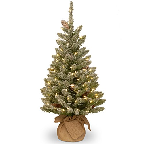 National Tree Company Pre-lit Artificial Mini Christmas Tree | Includes Small White LED Lights and Cloth Bag Base | Snowy Concolor Fir Burlap - 3 ft