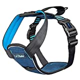 CarSafe, Crash Tested Dog Safety Harness, crash tested to 32Kg/70lbs, safely secure dog in the car, comfortable and padded design, for toy, small, medium and large dogs