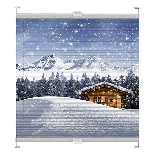Plissee mit Motiv 5003 nach Maß Schrauben in Glasleisten Klemmen auf Fensterrahmen Digitaldruck Sichtschutz lichtdurchlässig fest verspanntes Jalousie Rollo Fenster innen Breite 51-74 Höhe 25-100 cm