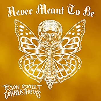 Never Meant To Be (Acoustic)