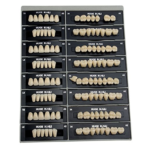 AZDENT Dental Synthetic Resin Tooth Denture T8-A2(28 units/4 suits)