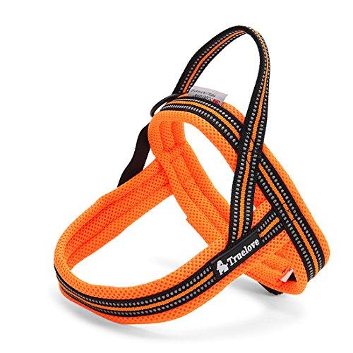 Rantow 3M Night Safety Reflektierendes Hundegeschirre Kein Zug Einstellbare Hundeweste Harness Soft Mesh Katzengeschirre für Large/Medium/Small Hunde, Orange (XXS (41-52cm))