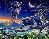 Kit de pintura de diamantes 5D,Cielo estrellado bosque animales leopardo negro Taladro redondo punto de cruz, bordado, artesanía para adultos, niños, para decoración del hogar