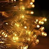 XJJ-Luci di Rete 3 M * 3 M Netto Fata Luce LED Twinkle Light String Impermeabile con 8 modalità di Cavo per Il Giardino di Natale Memoria per Interni All'aperto per Giardino