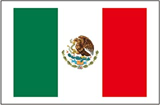 8 Large Mexico Flag Tattoos: Mexican World Cup Party Favors