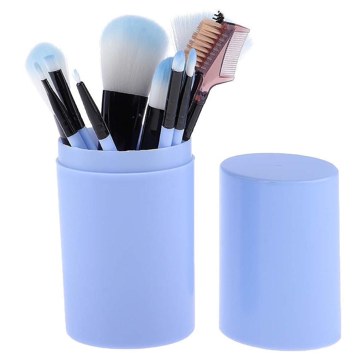 防止ジャム分泌するMakeup brushes 青、スミアのようなリアルな、持ち運びに快適、収納バケット付き化粧ブラシセット付き12ピース高品質木製ハンドル化粧ブラシセット suits (Color : Blue)