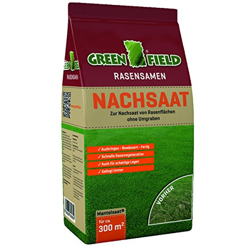 Greenfield 17818 Sac de semences de Gazon pour réensemencement Fond Plat 5 kg