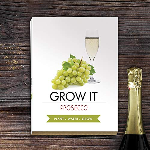 Gift Republic Grow It Prosecco
