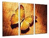 Poster Fotográfico Mariposa hermosa, romantica Tamaño