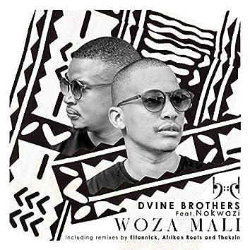 Woza Mali(Incl Eltonnick, Thakzin and Afrikan Roots Remixes)