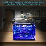 BELLALICHT-Aquarium-LED-Beleuchtung-Aquariumbeleuchtung-Lampe-Wei-Blau-Licht-6W11W18W-mit-Verstellbarer-Halterung-fr-30cm-45cm-Aquarium