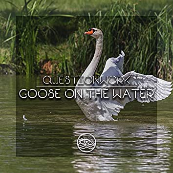 Goose On The Water