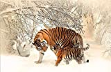 N / A Animal Posters and Prints Mural Canvas Paintings in The Snow Flowers Two Tigers in The Living Room Pictures Home Decor Frameless 30x45cm