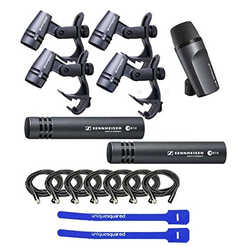 Sennheiser e600 Kit