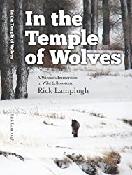 In the Temple of Wolves: A Winter's Immersion in Wild Yellowstone by Rick Lamplugh