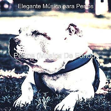 Perros (Musica De Fondo)