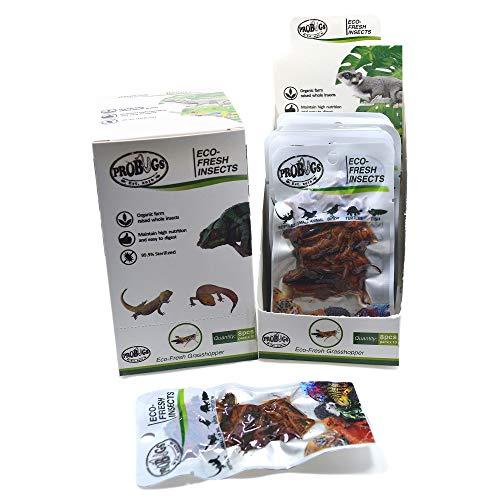 PROBUGS Upgrade Reptile Food, Eco-Fresh Grasshopper for Turtles, Bearded Dragon, Hedgehog, Lizard, Chameleon, Birds