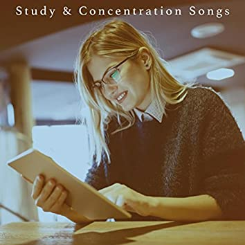 Study & Concentration Songs