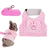 Filhome Adjustable Rabbit Harness Leash, Bunny Harness Leash Cute Vest Harness for Rabbit Ferret Bunny Kitten Guinea Pig Walking