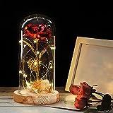Rosa Eterna Rosas Bella y Bestia, Elegante Cúpula de Cristal con Base Pino Luces LED Regalos para el Día de San Valentín, Día de la Madre, Aniversario de Bodas, Cumpleaños