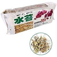 12L Sphagnum Moss Nutrición Hidratante Orgánico fertilizante para orquídeas