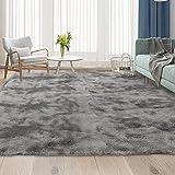 Aternoon Area Rugs, Super Soft Fluffy Shag Rug Floor Carpet for Living Room, Children Bedroom, Nursery Play Room, Home Decor, 5.3 x 7.5 Feet