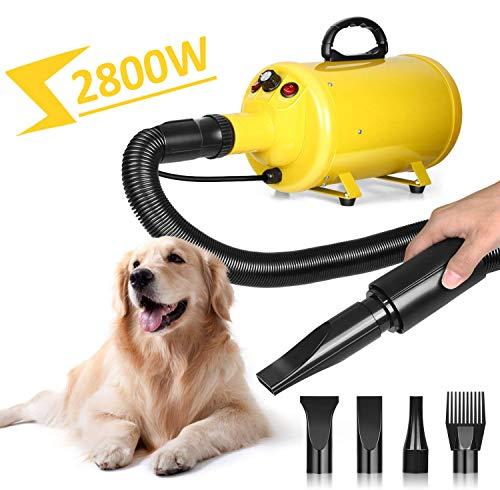 amzdeal Hundefön Pet Dryer 2800W für Hundepflege Tierfön mit Einstellbarer Windgeschwindigkeit, Hundetrockner mit 4 Düsen