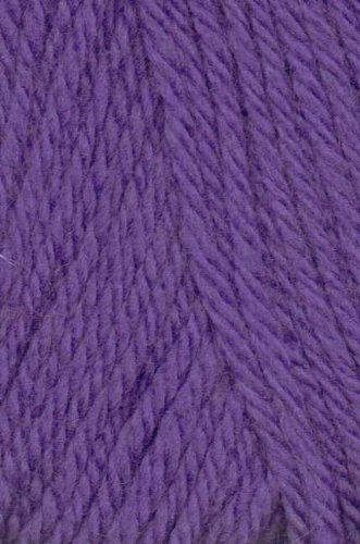 Nashua Handknits Creative Focus Superwash 23 Purple