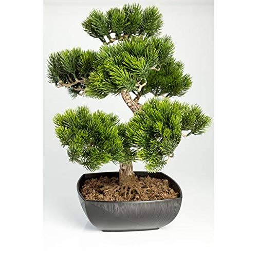 artplants.de Bonsái Pino Artificial en Cuenco con 210 ápices, 50cm, Uso Exterior - Bonsái Decorativo - Bonsai Artificial