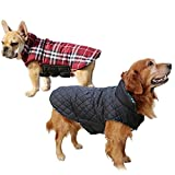 Waterproof Dog Coat with Chest Protector