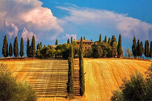 ZSMPU Puzzles Für Erwachsene 1000 Stück, Provinz Siena Toscana Italien, Holzpuzzlespielspiel Erforschen Sie Kreativität Und Problemlösung