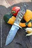 Cuchillo de damasco de caza ERUYAGI tamaño mediano de acero de damasco