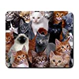 Cats Galore Mouse Pad
