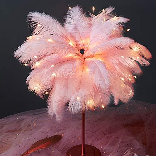 Anyutai Feder-Lampe, LED-Fernbedienung, Federlicht, romantisch, rosa Federn, Tischlampe, Nachtlicht