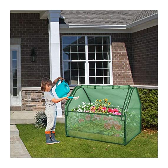 SGHB Solid Wood Raised Garden Bed with Greenhouse Planters Box for Vegetables Flower Fruits Herb Outdoor (Green Round) 2 The greenhouse of this combination is composed of PE cover and anti-rust sprayed steel tube. The garden bed is made of well-polished fir wood without painting. These high-quality materials extend its service time. Four-sided tie are used to fix the cover with each poles. All-round edging increases durability while beautifying the appearance. The steel frame can be quickly installed by plastic connectors. There are 5 wooden strips to divide the space, can be easily installed and removed. Supports growing multiple plants at the same time, improve the utilization of space and convenient for you to manage flowers and plants.